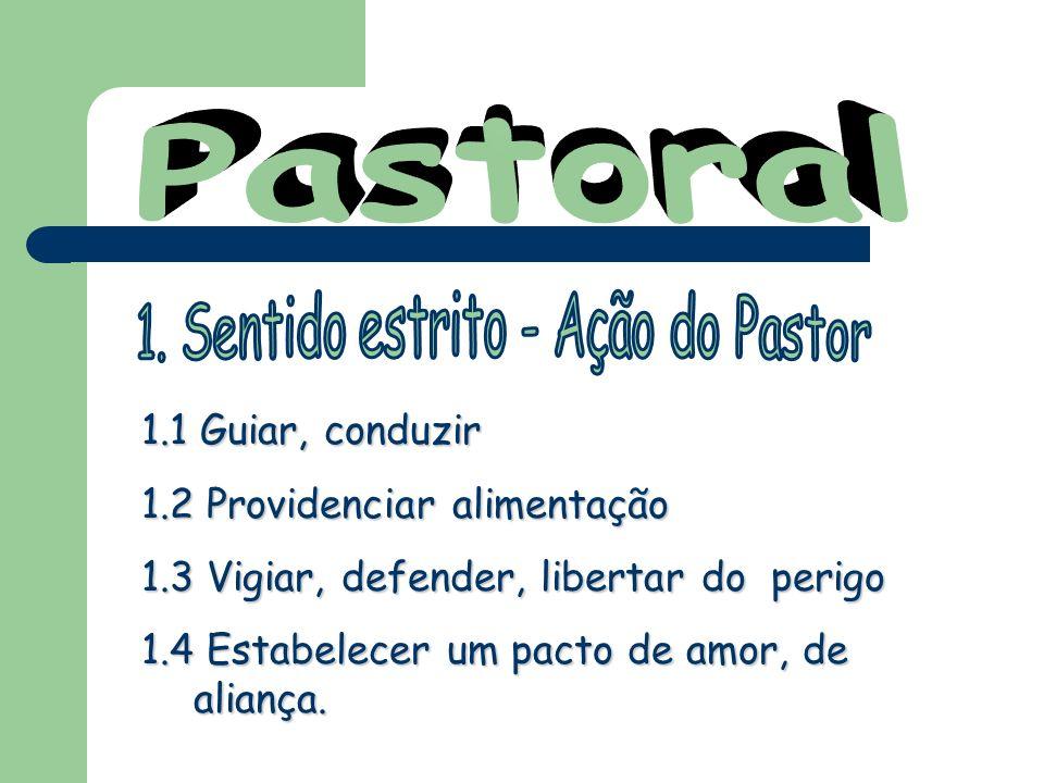 1. Sentido estrito - Ação do Pastor