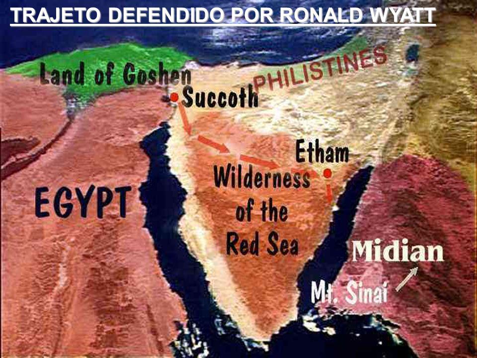 TRAJETO DEFENDIDO POR RONALD WYATT