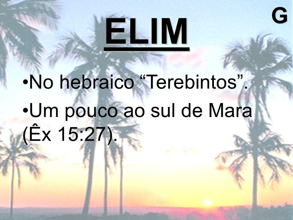 G ELIM No hebraico Terebintos . Um pouco ao sul de Mara (Êx 15:27).