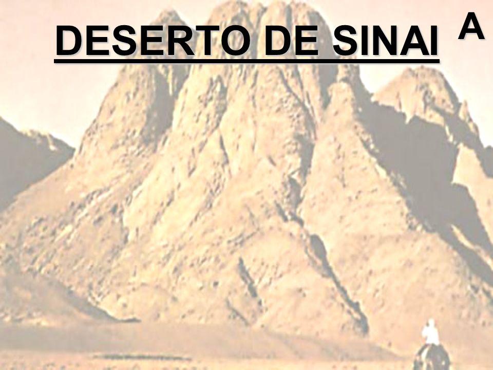 A DESERTO DE SINAI