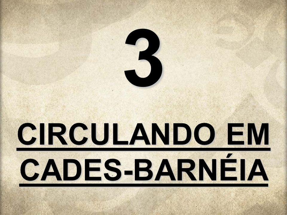 CIRCULANDO EM CADES-BARNÉIA