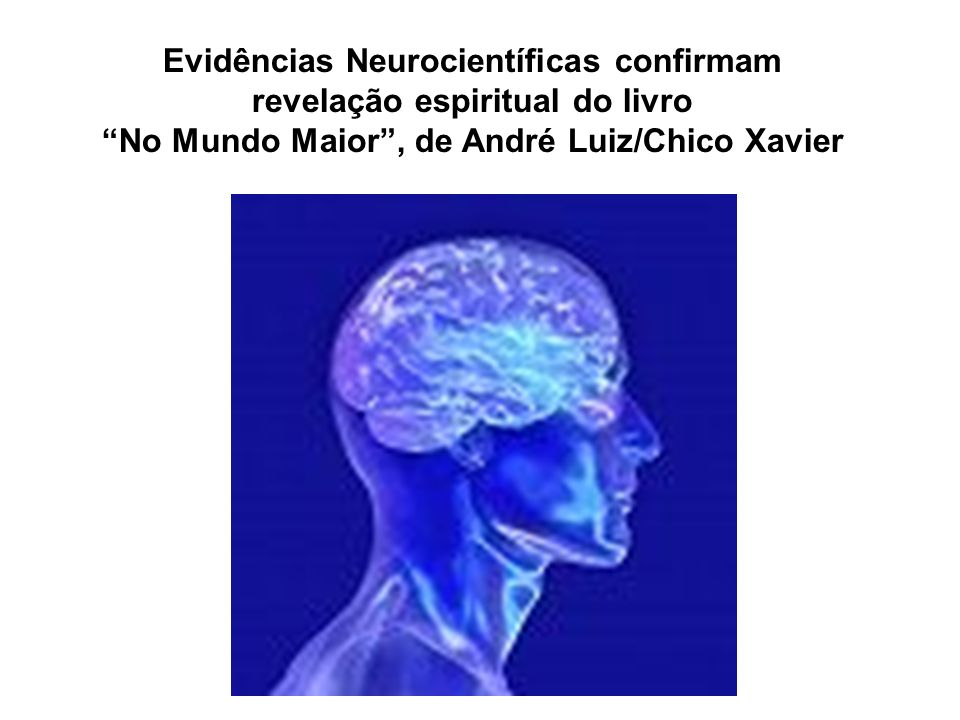 Evidências Neurocientíficas confirmam revelação espiritual do livro