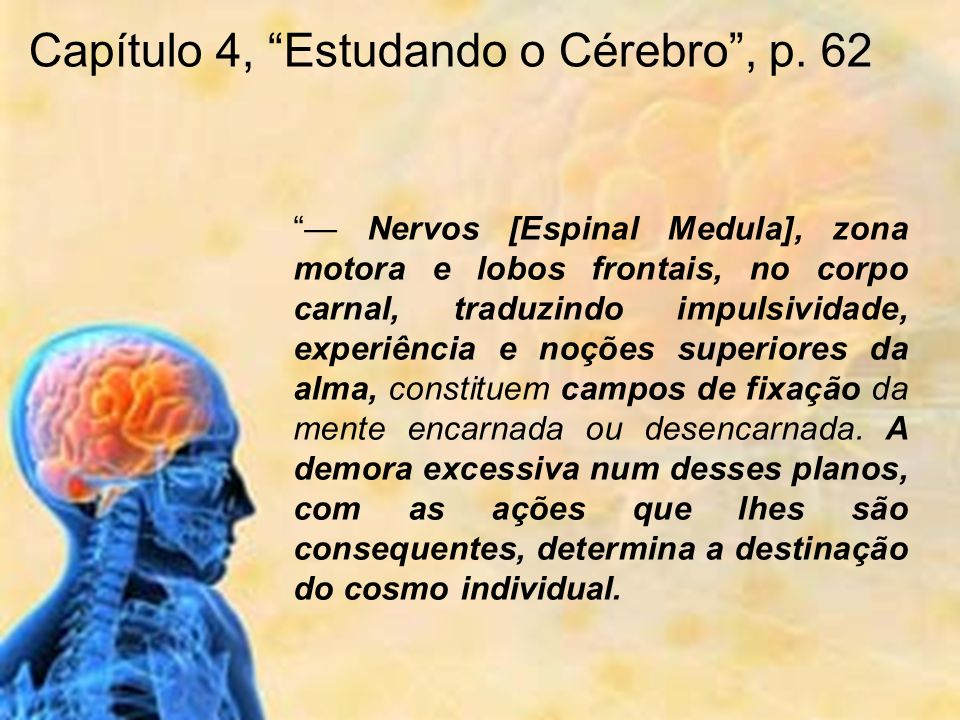 Capítulo 4, Estudando o Cérebro , p. 62