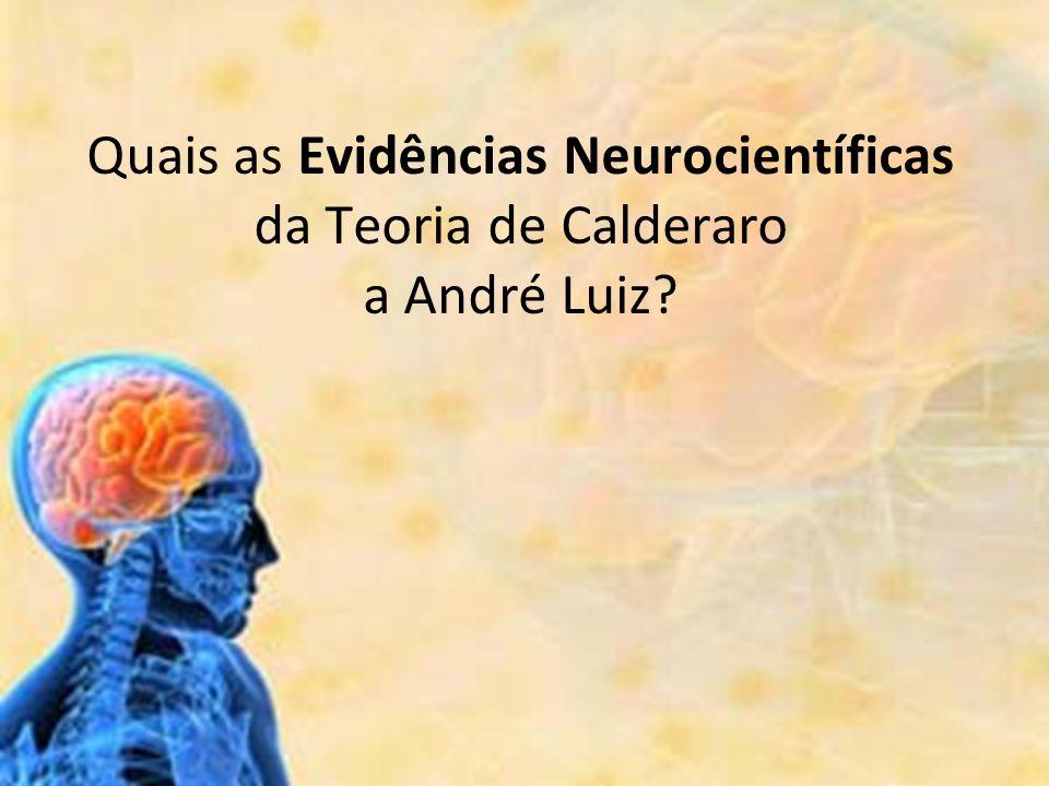 Quais as Evidências Neurocientíficas da Teoria de Calderaro a André Luiz