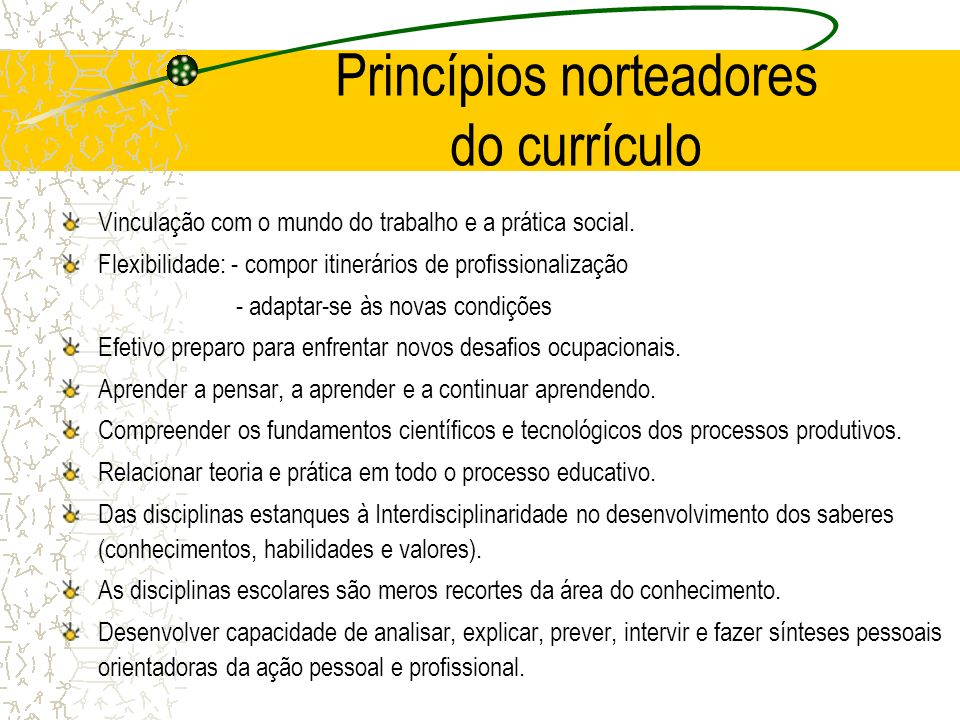 Princípios norteadores do currículo