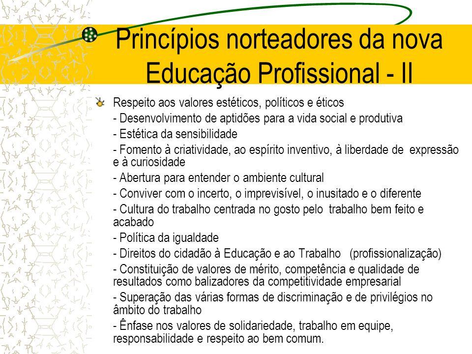 Princípios norteadores da nova Educação Profissional - II