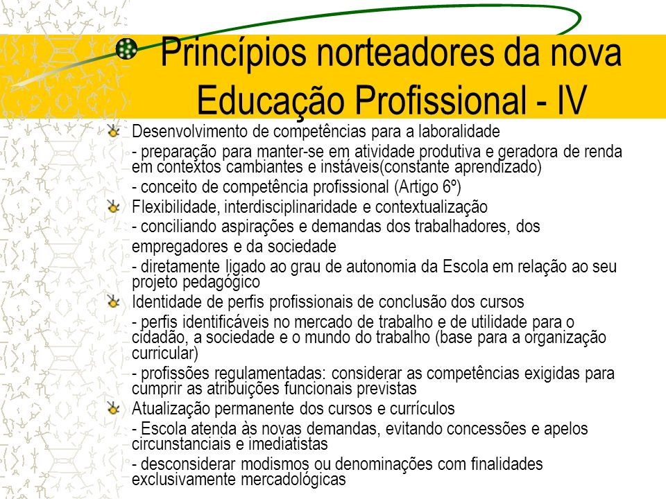 Princípios norteadores da nova Educação Profissional - IV