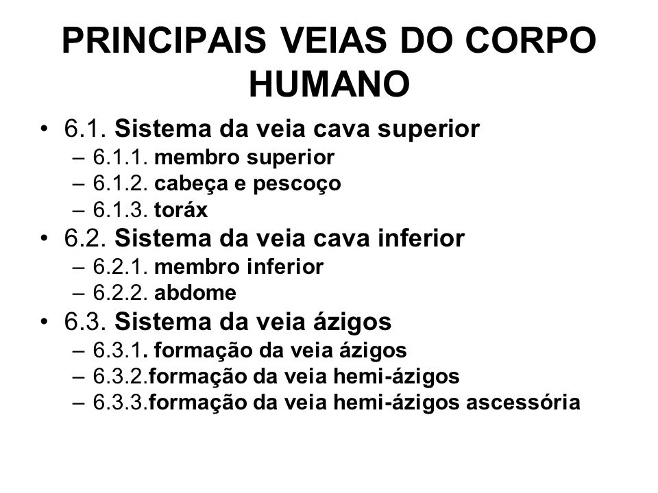 PRINCIPAIS VEIAS DO CORPO HUMANO