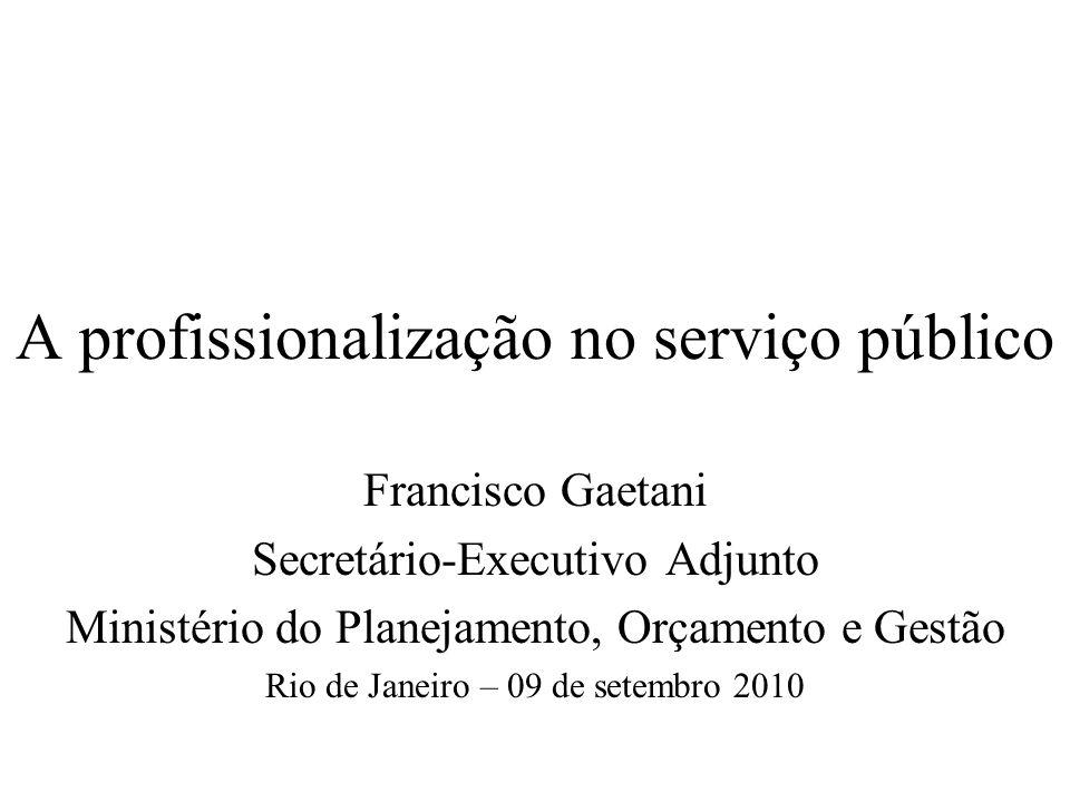 A profissionalização no serviço público