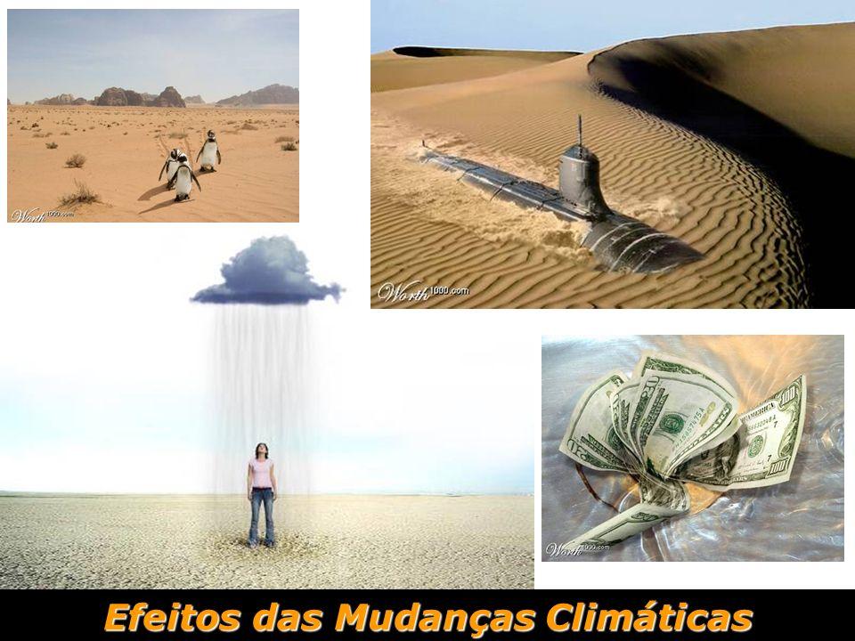 Efeitos das Mudanças Climáticas