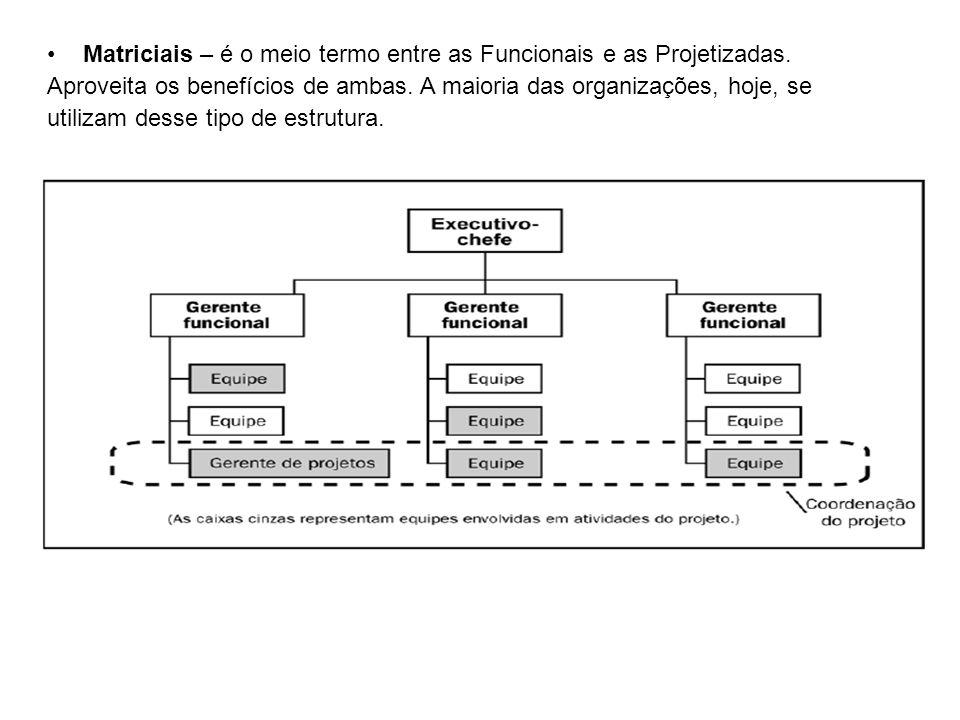 Matriciais – é o meio termo entre as Funcionais e as Projetizadas.
