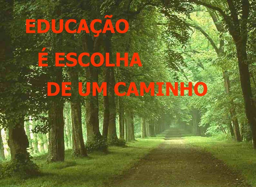 EDUCAÇÃO É ESCOLHA DE UM CAMINHO