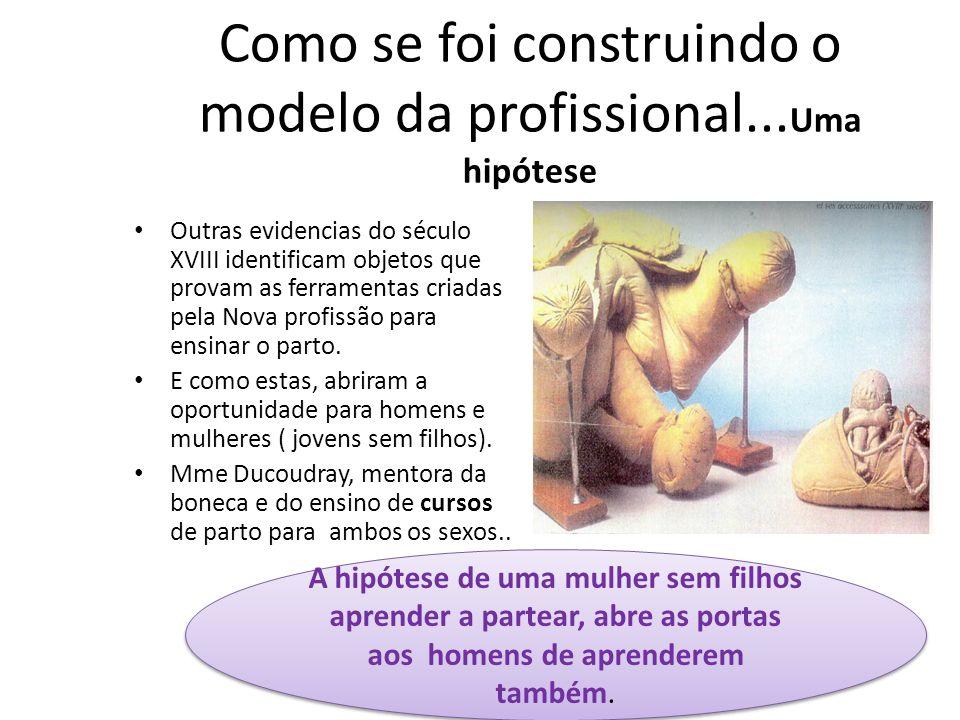 Como se foi construindo o modelo da profissional...Uma hipótese