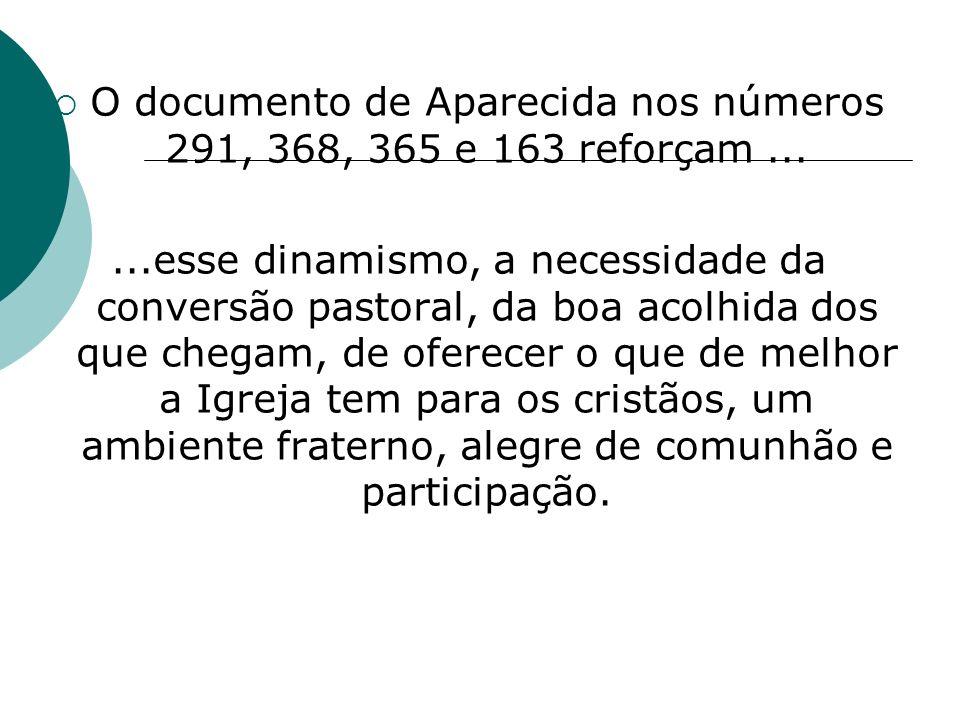 O documento de Aparecida nos números 291, 368, 365 e 163 reforçam ...