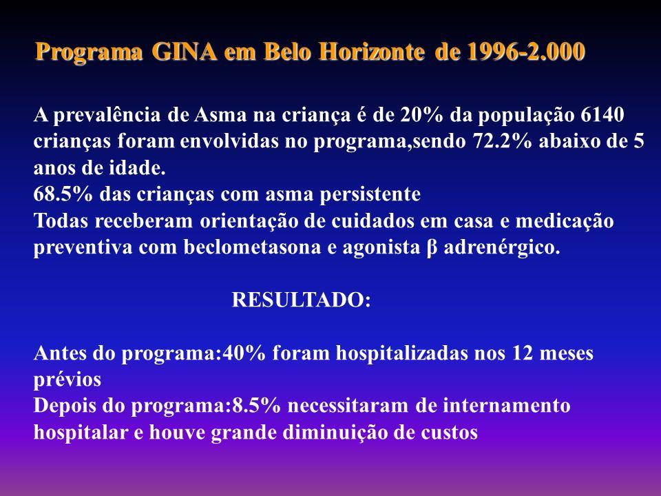 Programa GINA em Belo Horizonte de 1996-2.000