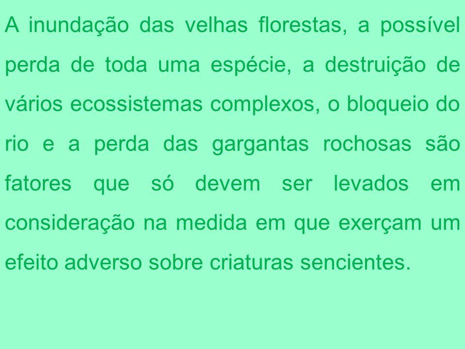 A inundação das velhas florestas, a possível perda de toda uma espécie, a destruição de vários ecossistemas complexos, o bloqueio do rio e a perda das gargantas rochosas são fatores que só devem ser levados em consideração na medida em que exerçam um efeito adverso sobre criaturas sencientes.