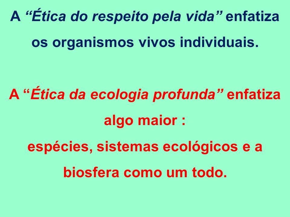A Ética da ecologia profunda enfatiza algo maior :