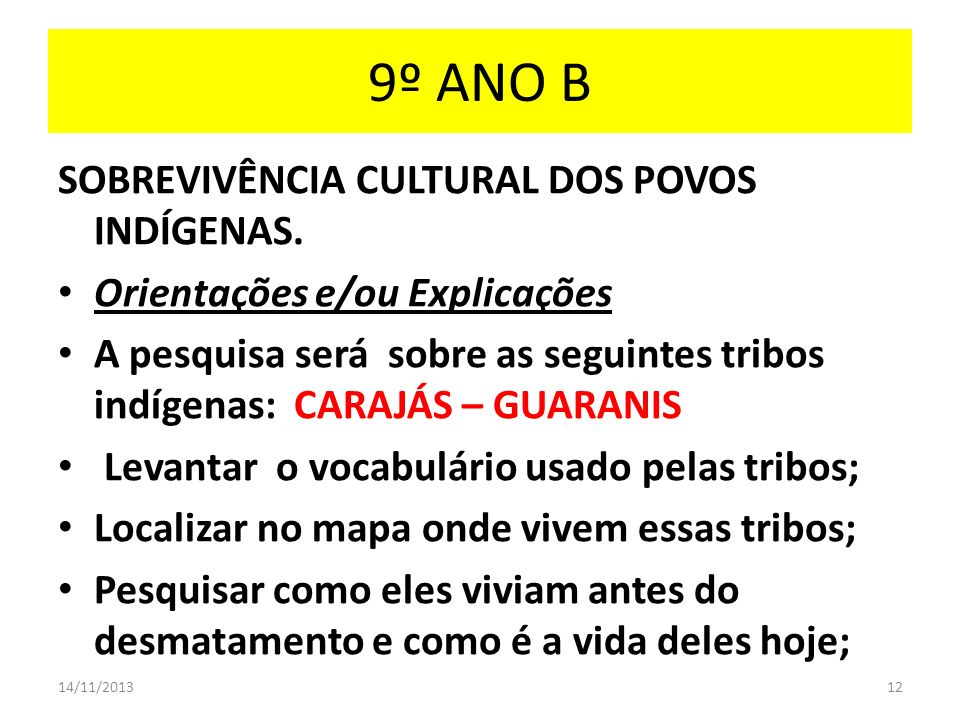 9º ANO B SOBREVIVÊNCIA CULTURAL DOS POVOS INDÍGENAS.
