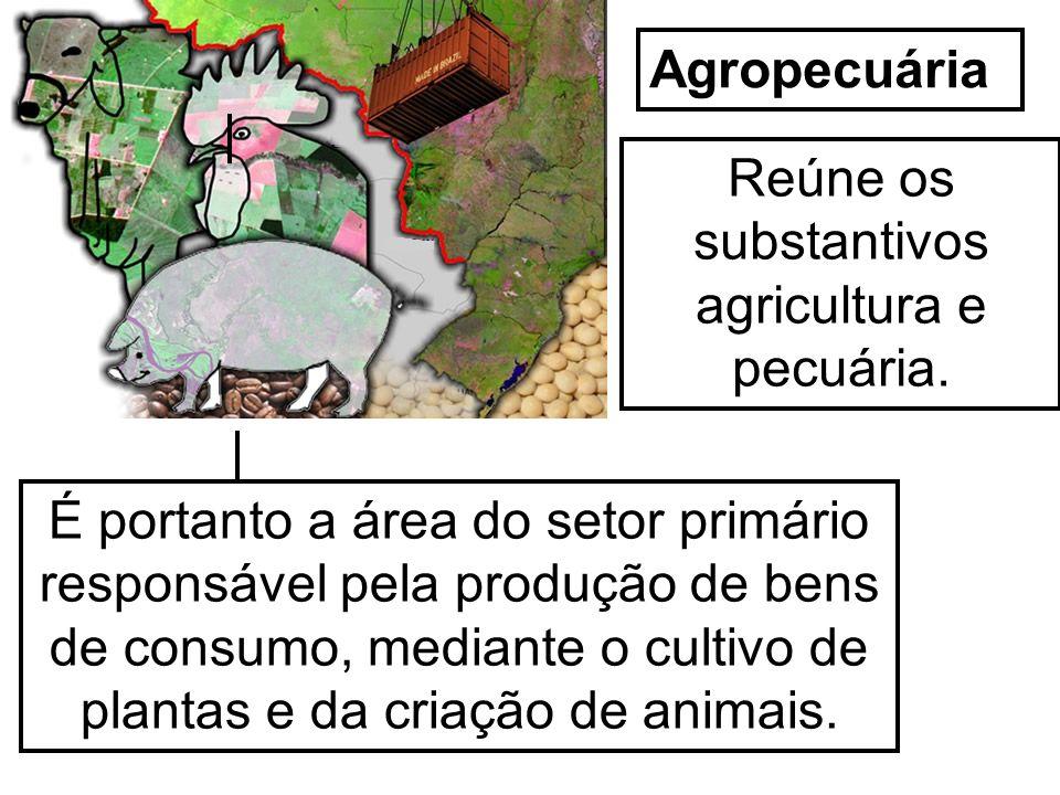 Reúne os substantivos agricultura e pecuária.