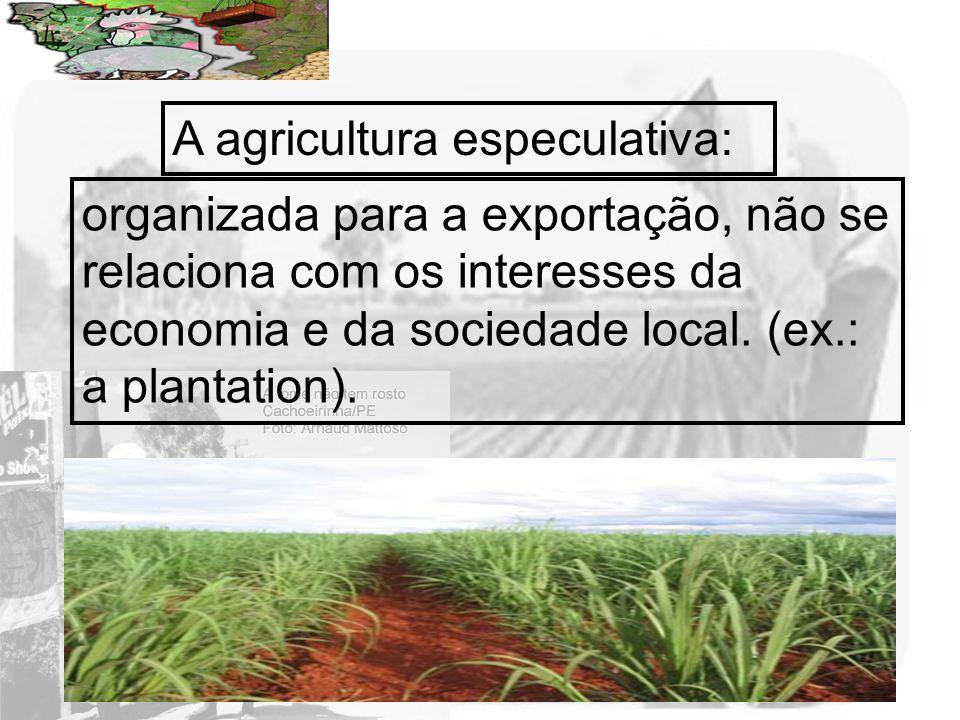 A agricultura especulativa: