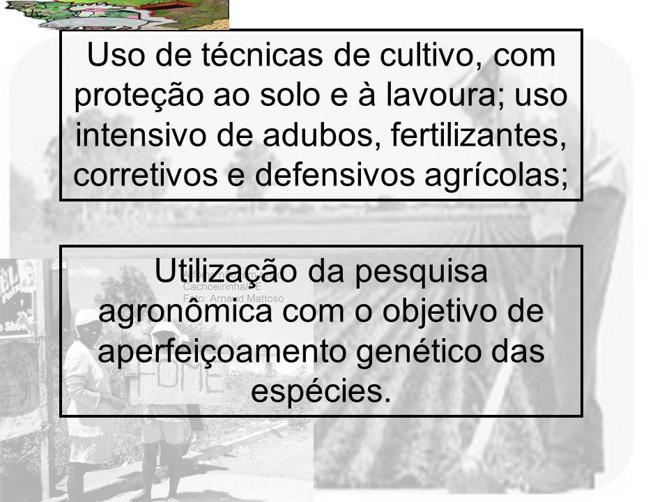 Uso de técnicas de cultivo, com proteção ao solo e à lavoura; uso intensivo de adubos, fertilizantes, corretivos e defensivos agrícolas;