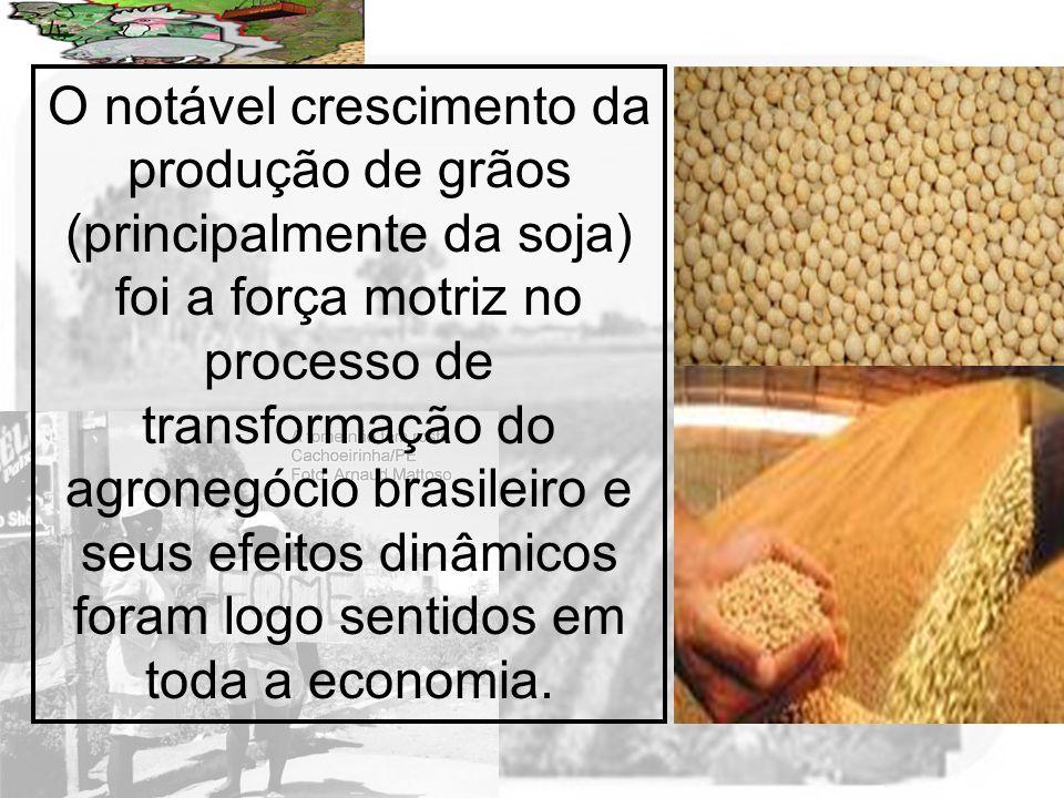 O notável crescimento da produção de grãos (principalmente da soja) foi a força motriz no processo de transformação do agronegócio brasileiro e seus efeitos dinâmicos foram logo sentidos em toda a economia.