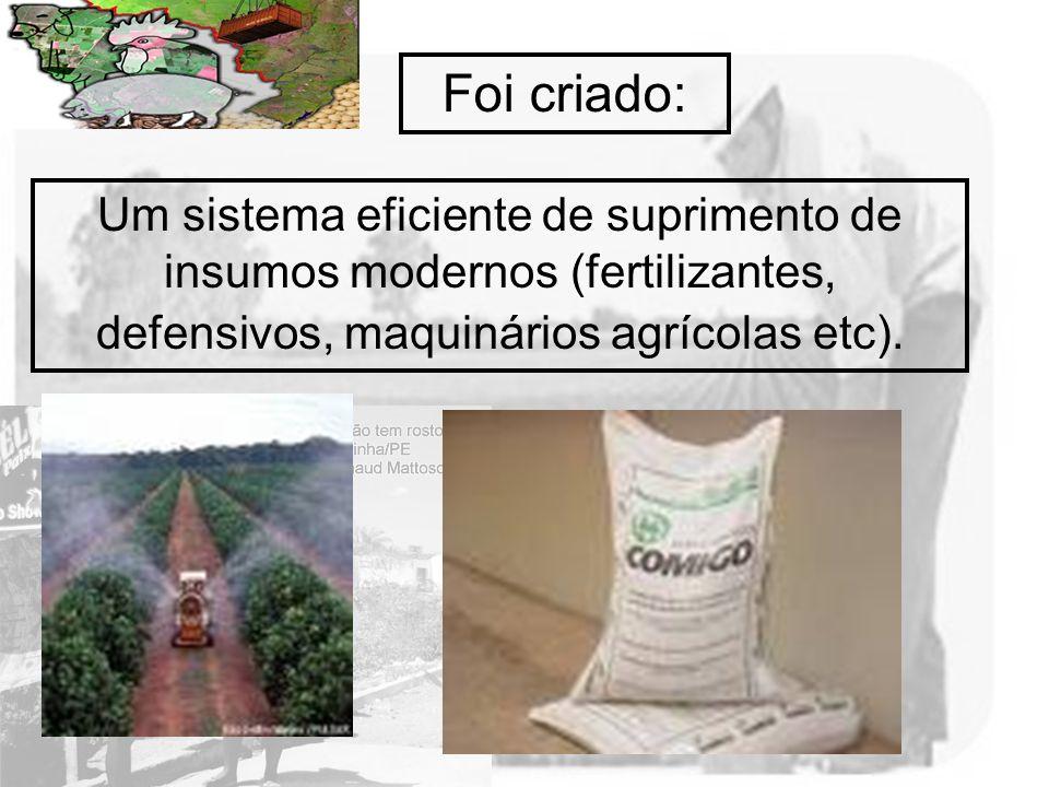 Foi criado: Um sistema eficiente de suprimento de insumos modernos (fertilizantes, defensivos, maquinários agrícolas etc).
