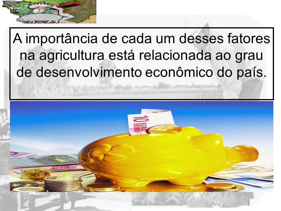 A importância de cada um desses fatores na agricultura está relacionada ao grau de desenvolvimento econômico do país.