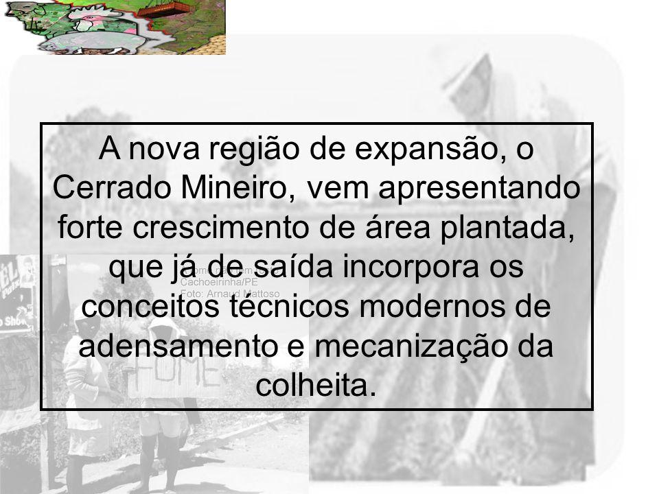 A nova região de expansão, o Cerrado Mineiro, vem apresentando forte crescimento de área plantada, que já de saída incorpora os conceitos técnicos modernos de adensamento e mecanização da colheita.