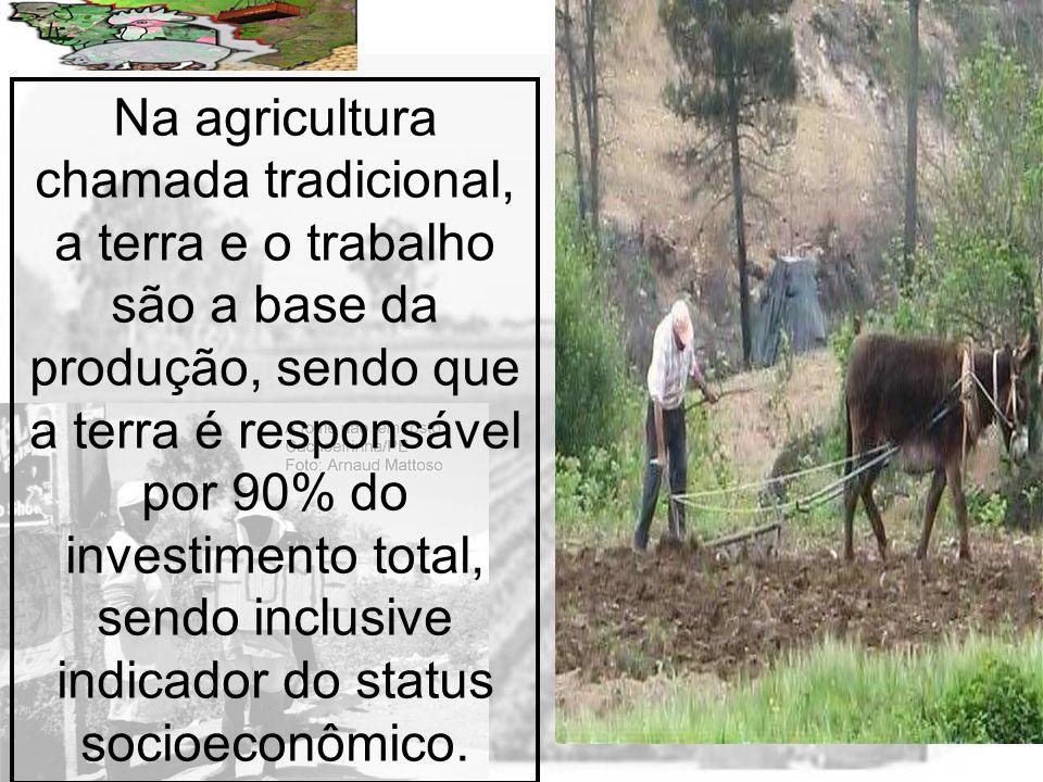 Na agricultura chamada tradicional, a terra e o trabalho são a base da produção, sendo que a terra é responsável por 90% do investimento total, sendo inclusive indicador do status socioeconômico.