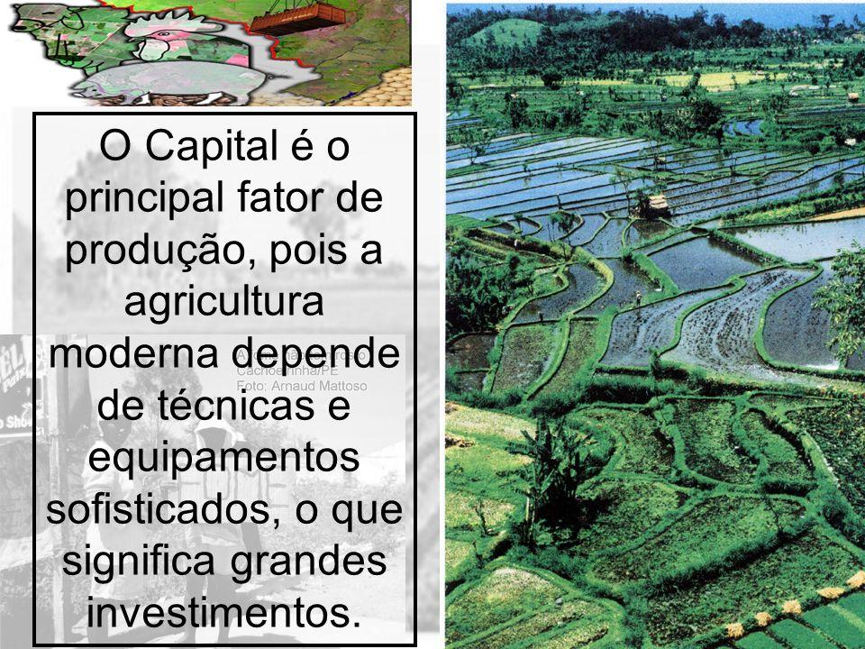 O Capital é o principal fator de produção, pois a agricultura moderna depende de técnicas e equipamentos sofisticados, o que significa grandes investimentos.