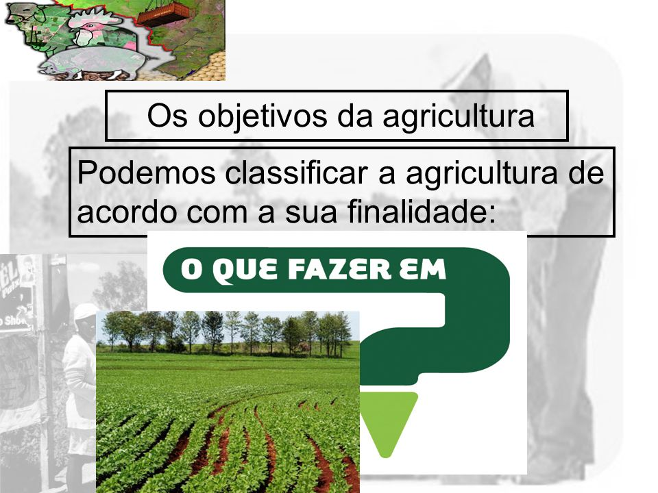 Os objetivos da agricultura