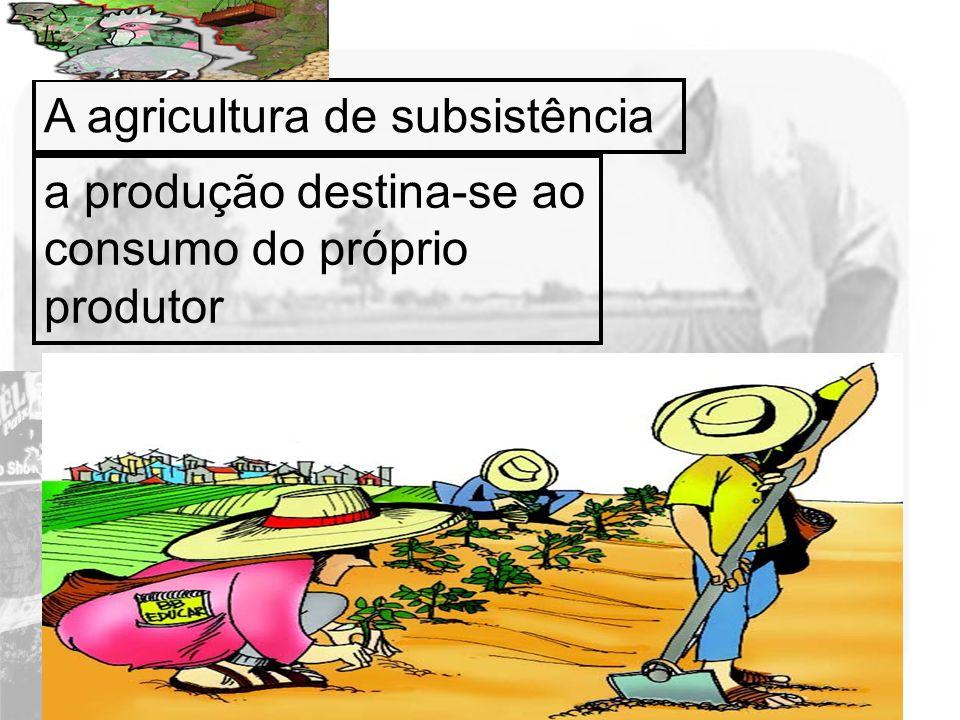 A agricultura de subsistência