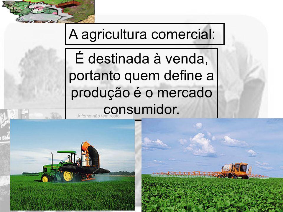 A agricultura comercial: