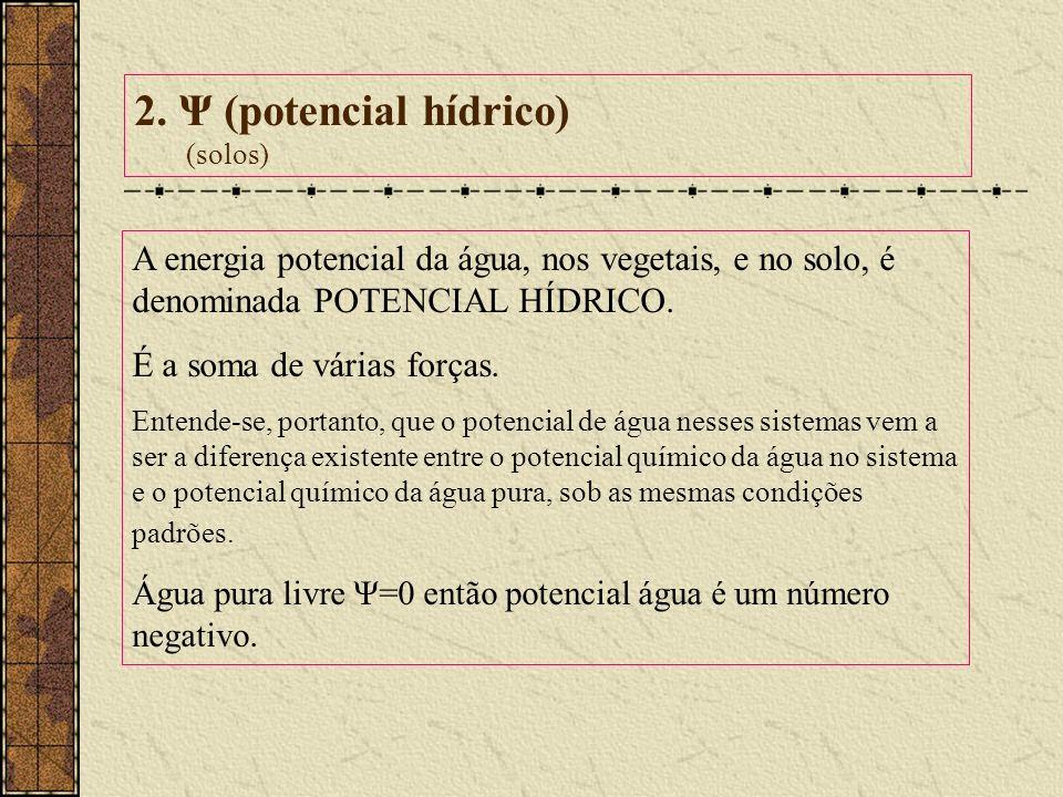 2. Ψ (potencial hídrico) (solos)