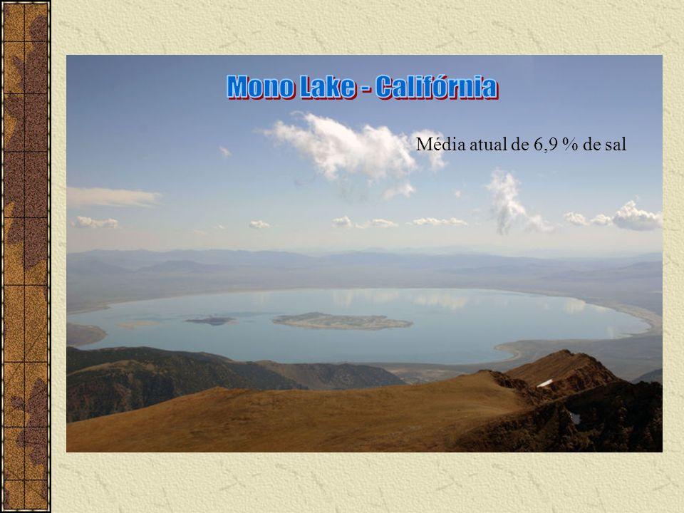 Mono Lake - Califórnia Média atual de 6,9 % de sal