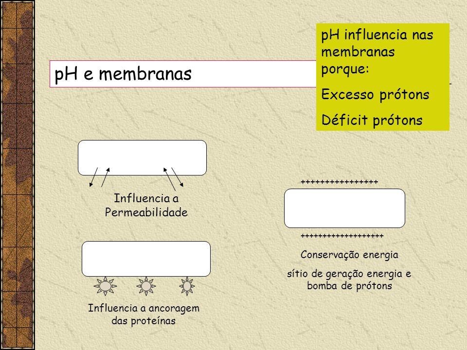 pH e membranas pH influencia nas membranas porque: Excesso prótons