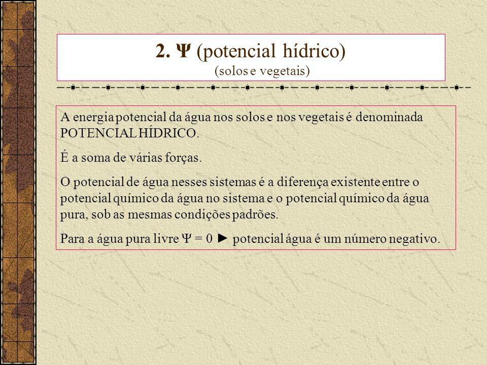 2. Ψ (potencial hídrico) (solos e vegetais)