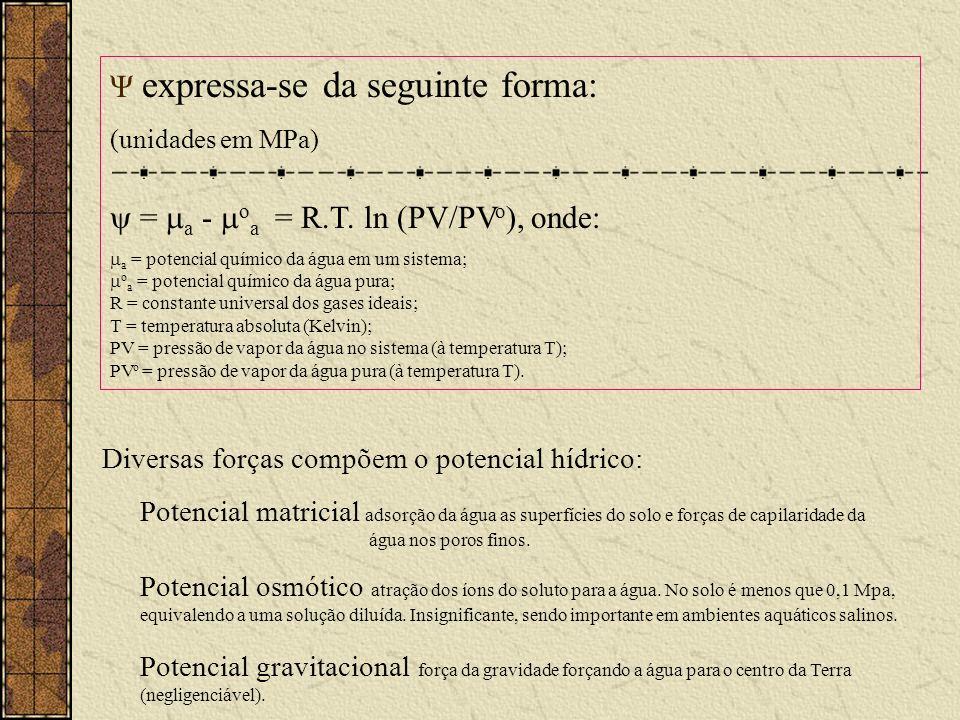 Ψ expressa-se da seguinte forma: