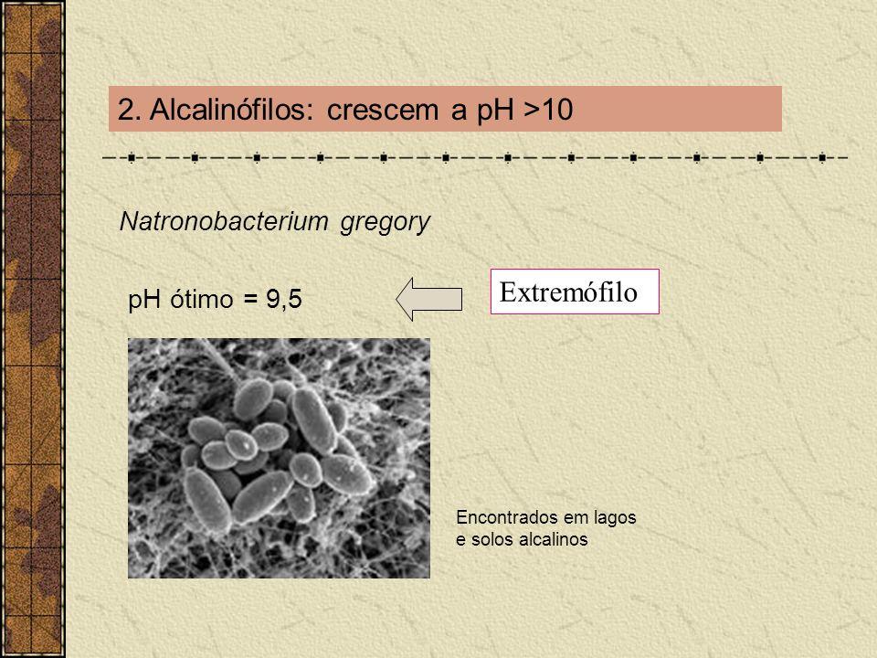 2. Alcalinófilos: crescem a pH >10