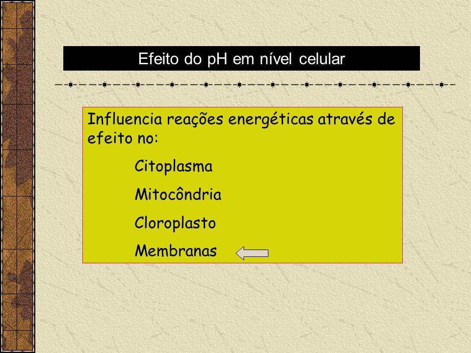 Efeito do pH em nível celular