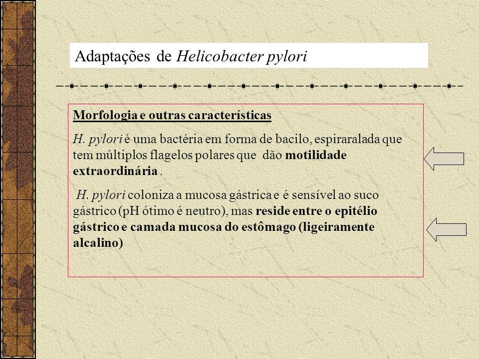 Adaptações de Helicobacter pylori