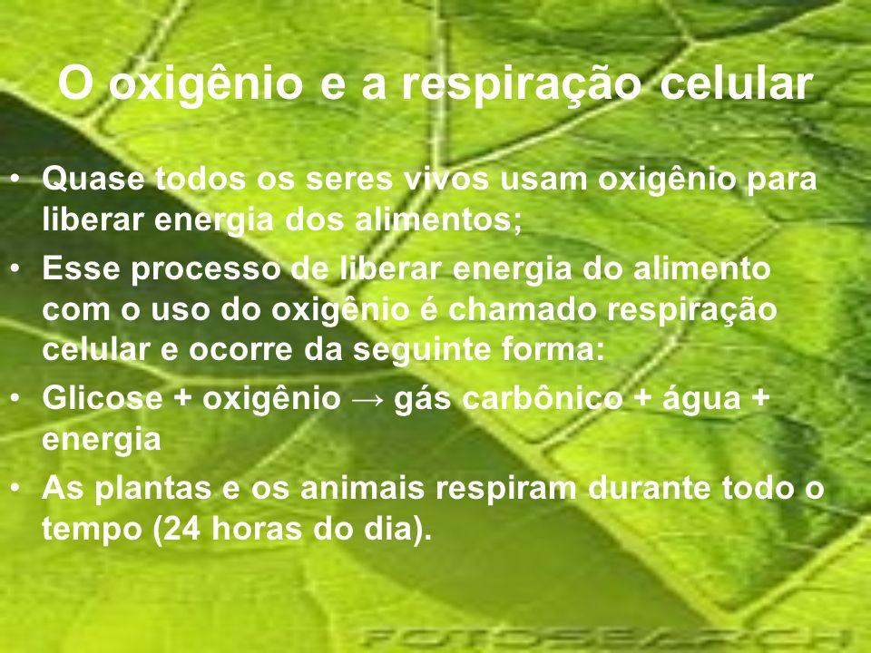 O oxigênio e a respiração celular