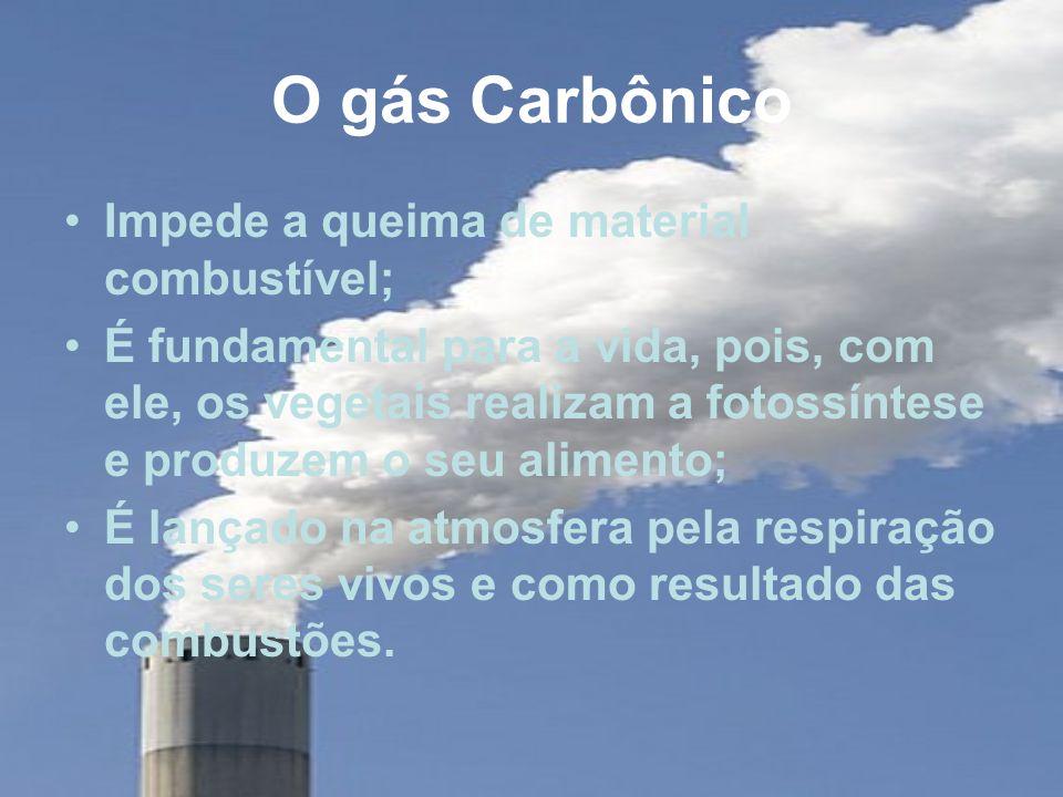 O gás Carbônico Impede a queima de material combustível;