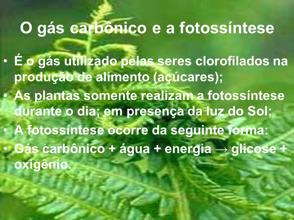 O gás carbônico e a fotossíntese