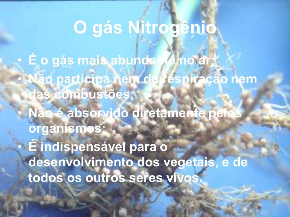 O gás Nitrogênio É o gás mais abundante no ar;