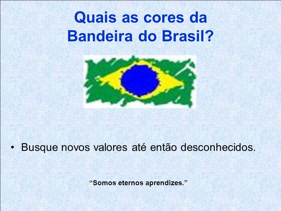 Quais as cores da Bandeira do Brasil