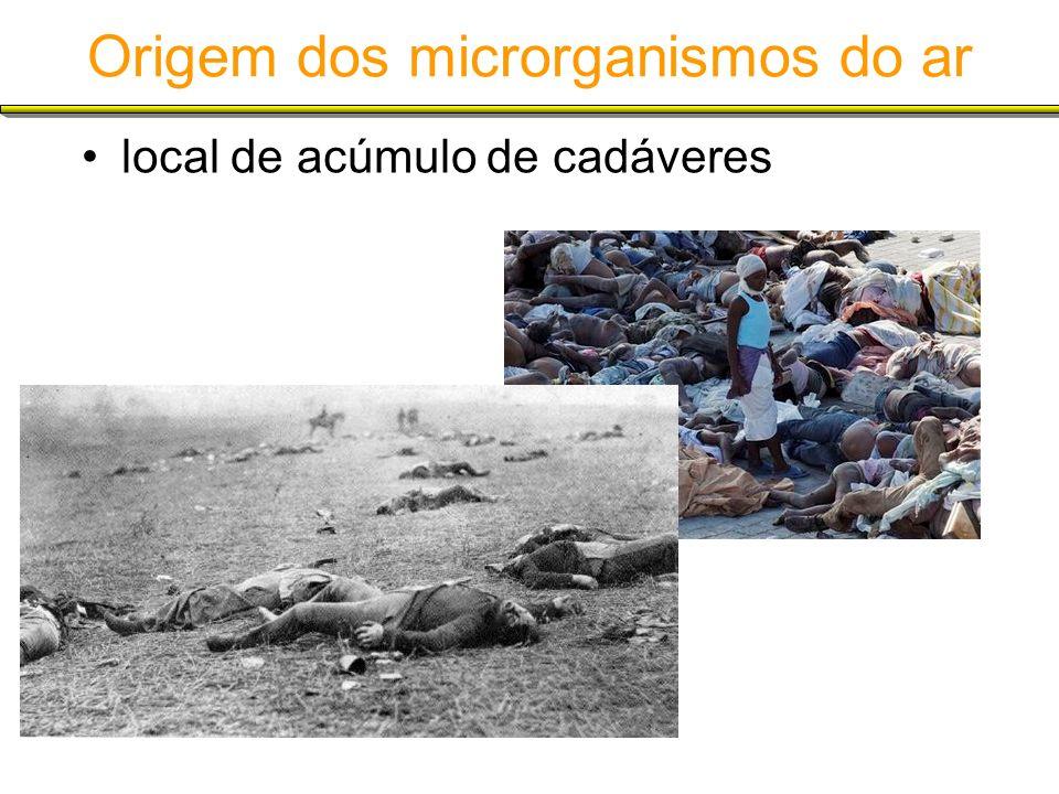 Origem dos microrganismos do ar