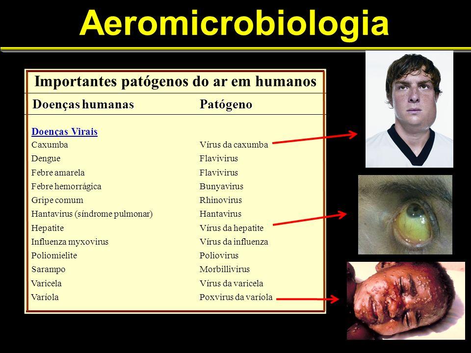 Importantes patógenos do ar em humanos