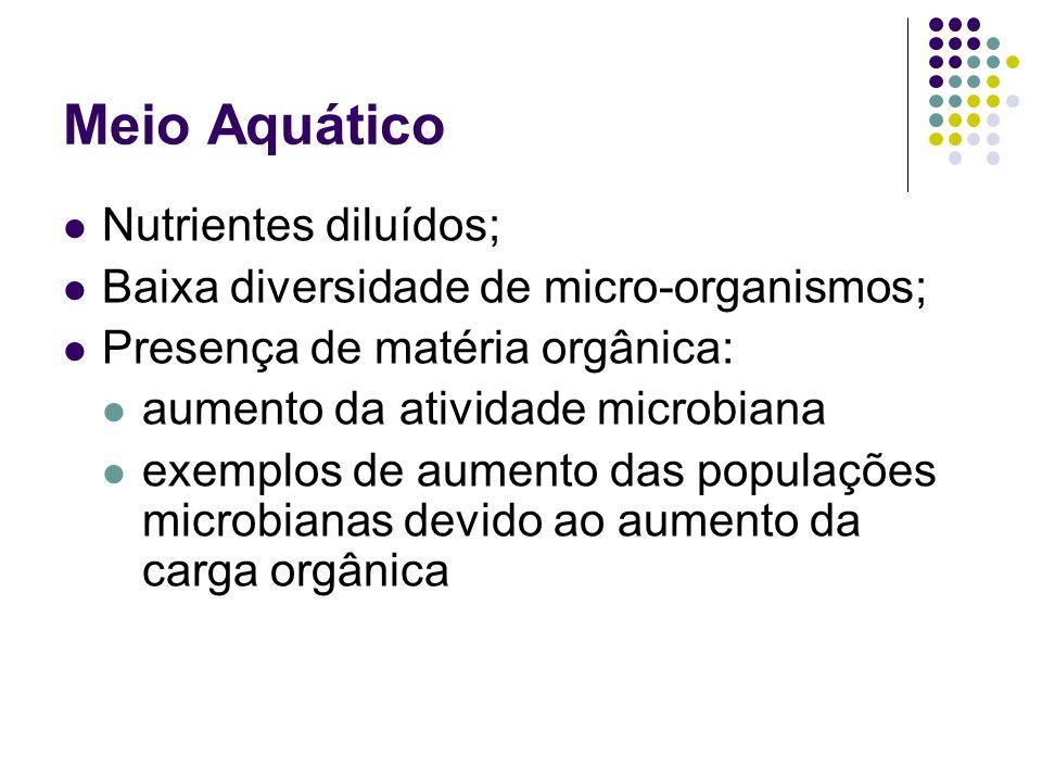 Meio Aquático Nutrientes diluídos;